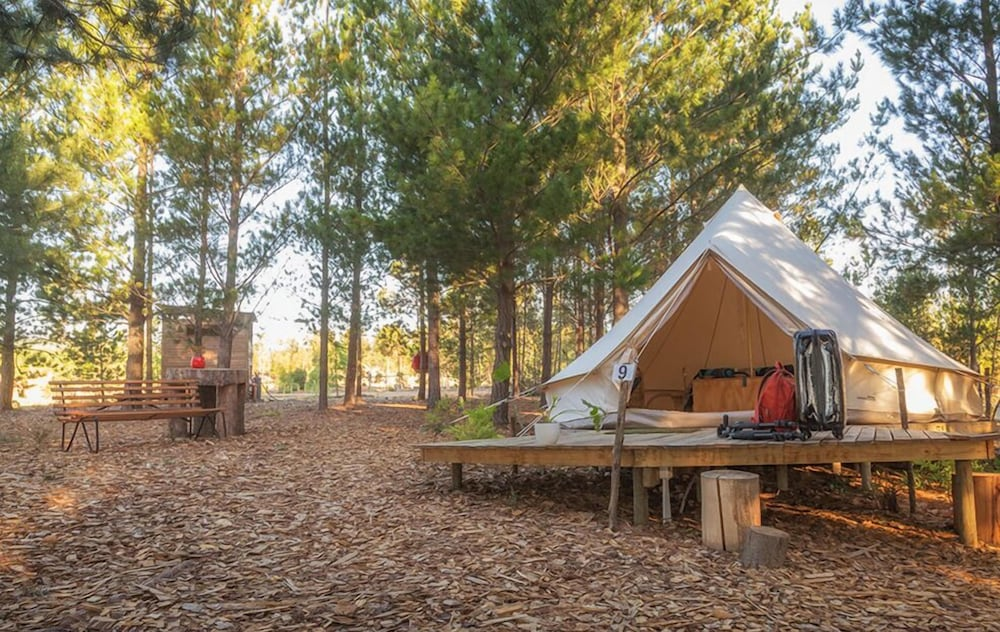 Featured Image, Cherry Glamping