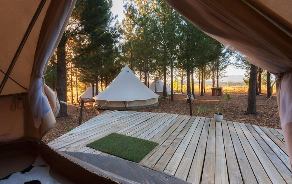 Room, Cherry Glamping