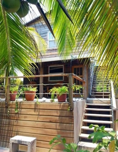 Caribbean Island of Utila: Hummingbird House