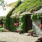 Charming Old-world Country Cottage, Near Adare