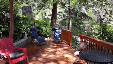 Mountain Cottage Surrounded by Forests ~ Beverly Hills of the Mountains!