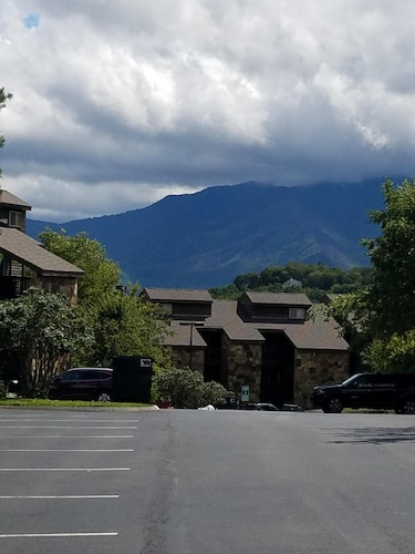 Escape to the Smokies & Sleep Above the Clouds