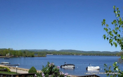 Great Place to stay Winter Getaways AND SKI Weeks AND Weekends Still Available near Ossipee