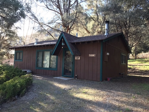 Cozy 2 Bedroom Cabin Surrounded by Huge Pine Trees