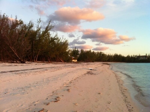Ocean Front, Pink Sand Beach, Near Gregory Town, Cove Eleuthera, Harbor Island