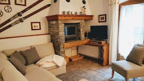 Télévision, cheminée, livres
