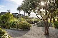 Hapuku Lodge & Tree Houses (1 of 19)