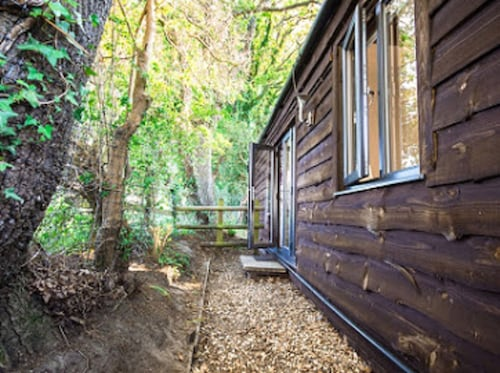 Luxury Lodge in the New Forest National Park