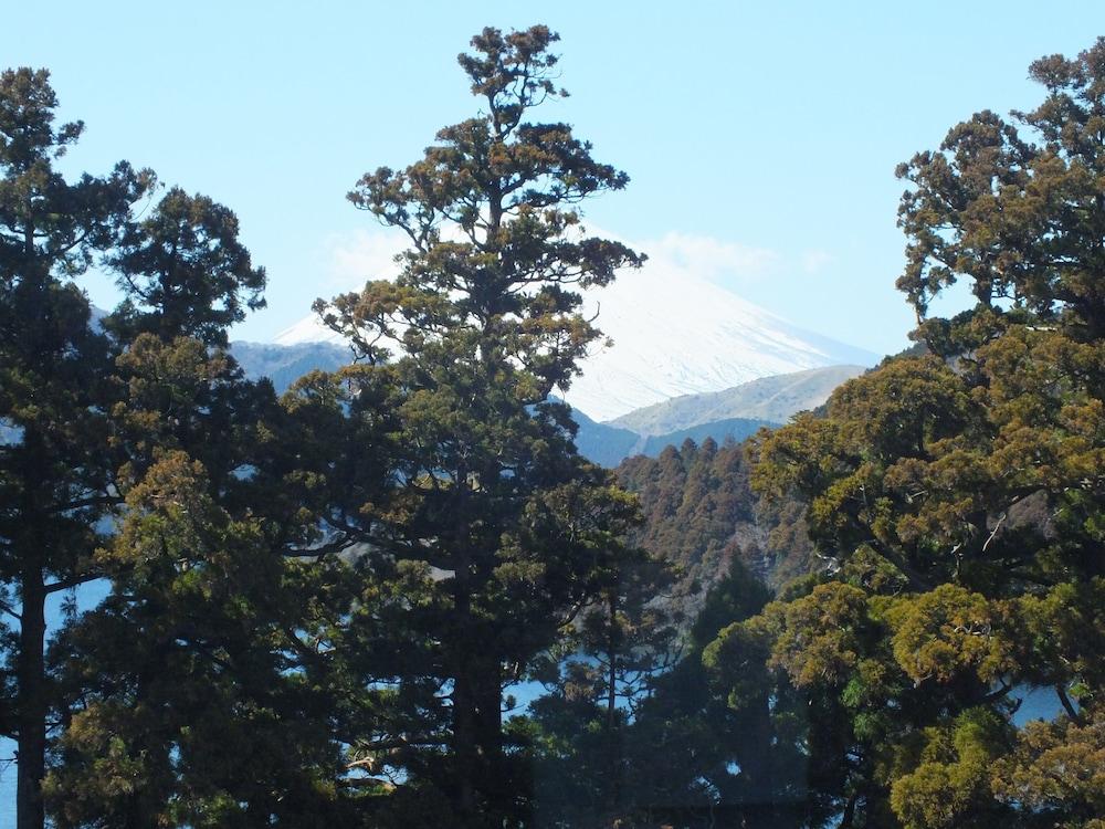 華の宿 ふくや / 神奈川県 箱根 1