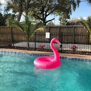 Heated Pool, Great Location, Close to Siesta, Lido, St Armands & Downtown!