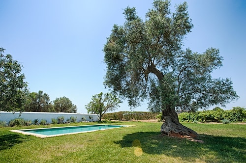 The Main House Morgado do Quintão Vineyard Estate in the Heart of the Algarve