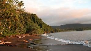 Private beach, scuba diving, kayaking, fishing