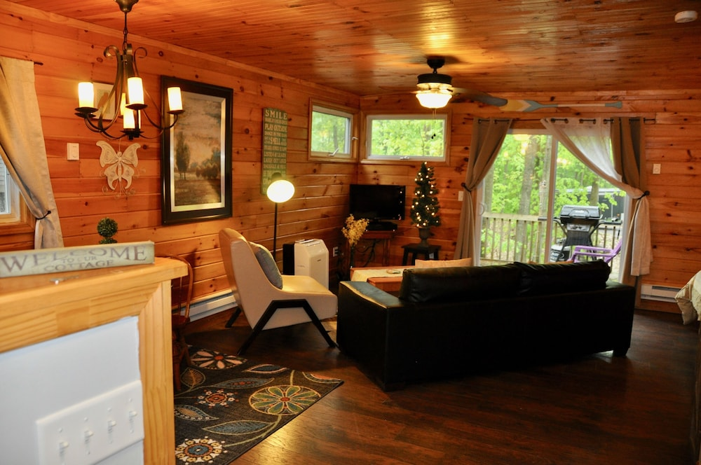 Living Room, Relax & Recharge!swim, Fish, Boat on Autumn Lake's Cove, Salmon River 3mins Away