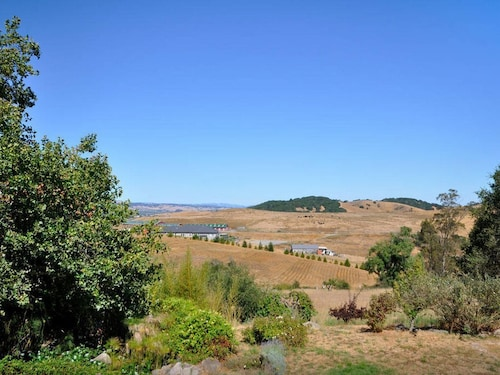 Great Place to stay 4-bedroom / 2-bath House With Pool on Working Winery near Petaluma