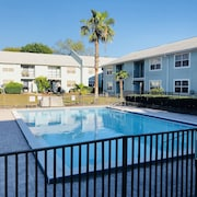 Apartment in Usf, Busch Gardens, Adventure Island and Moffit Cancer Center Area