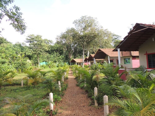 Jungle Nest Homestay