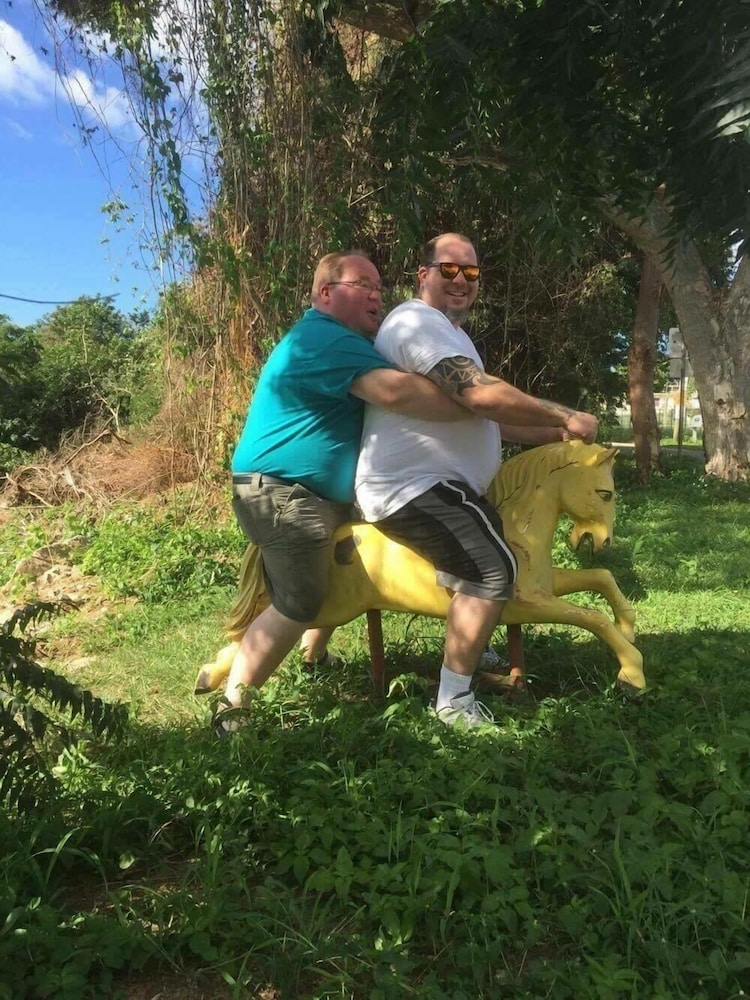Horse Riding, The Vieques Guesthouse