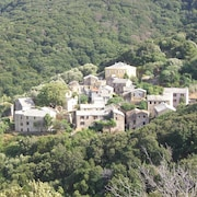 House Overlooking the Bush, sea View, 3 Bedrooms, Sleeps 6