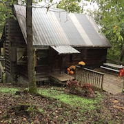 Secluded Cabin on the Kings River at Marshall Ford. Private and Beautiful River