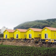 Udo Sunflower Pension and Guesthouse