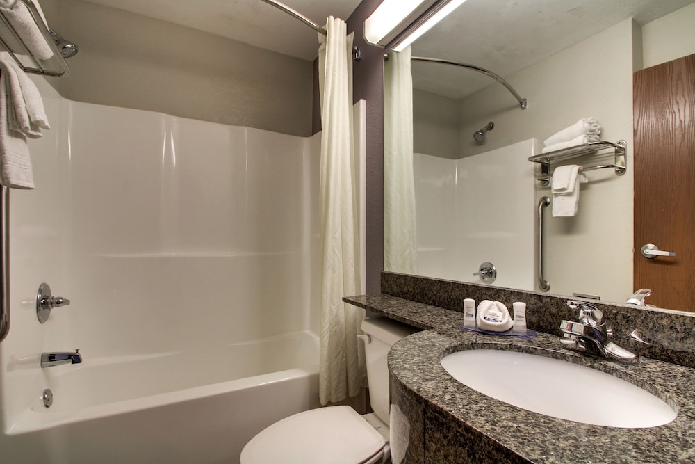 Bathroom, Microtel Inn & Suites by Wyndham Tuscaloosa/Near University