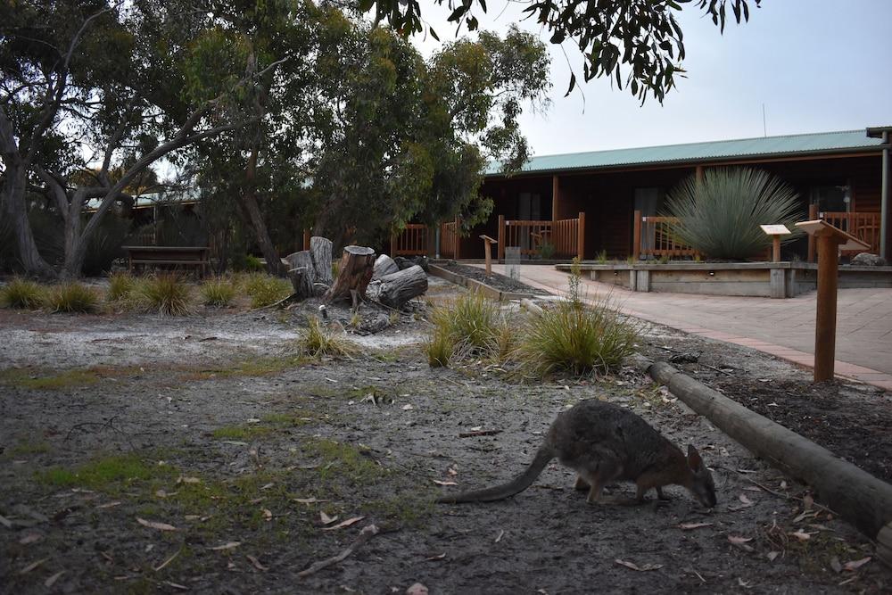 New Kangaroo Island Wilderness Retreat