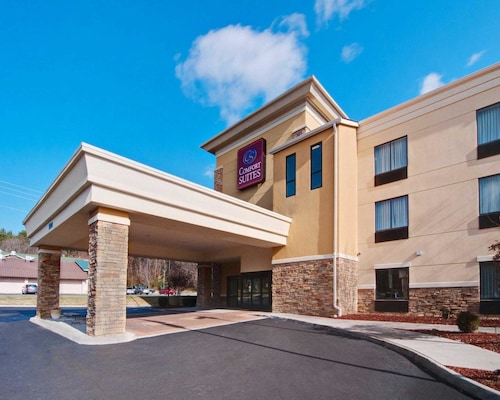 Great Place to stay Comfort Suites Salem-Roanoke I-81 near Salem