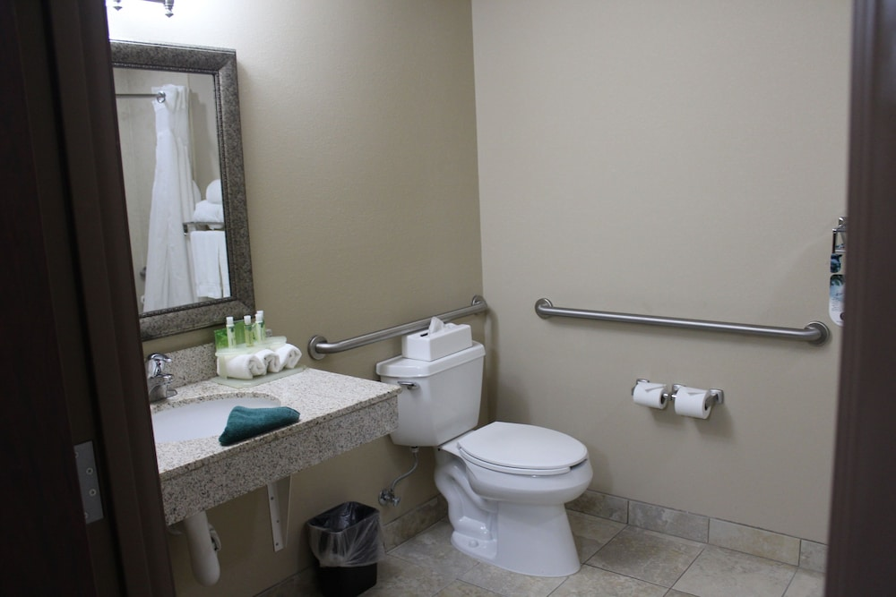 Bathroom, Holiday Inn Express & Suites Sedalia