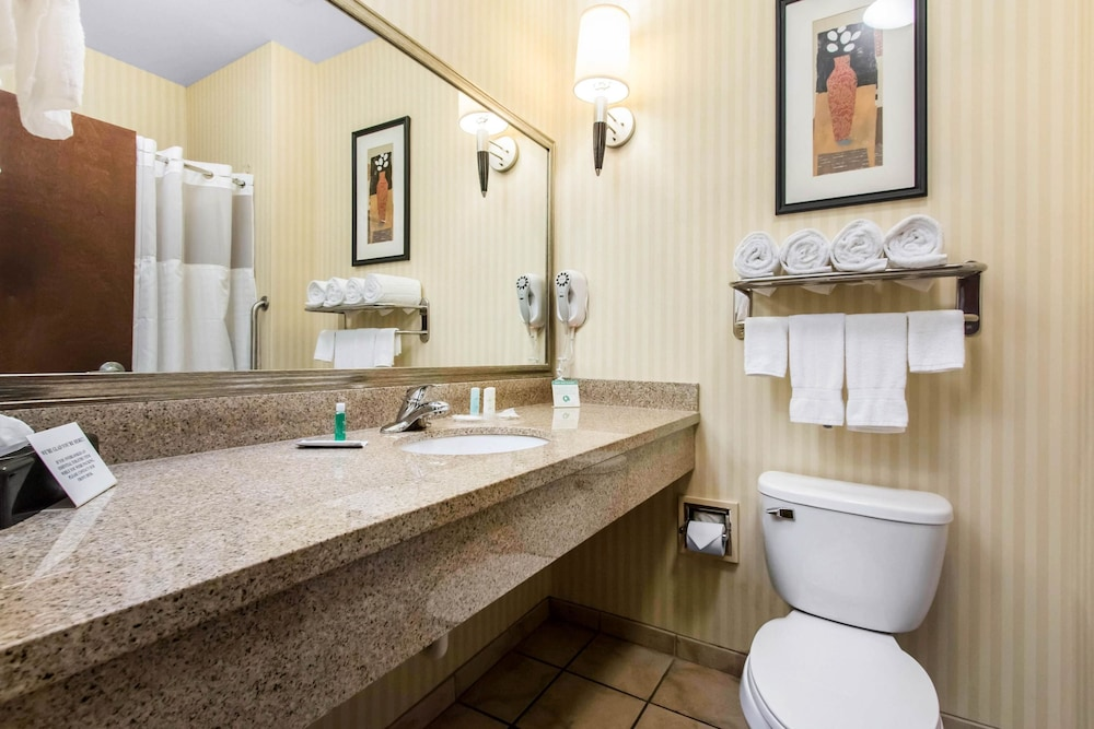 Bathroom, Comfort Suites Cullman I-65 Exit 310