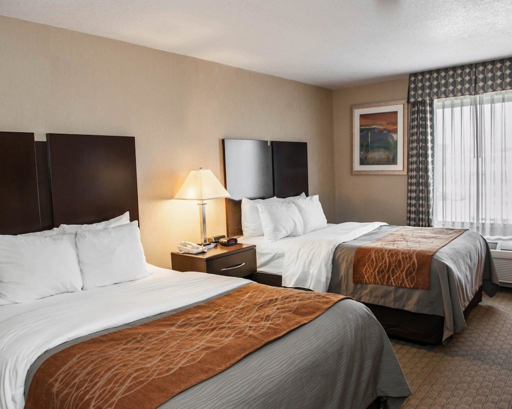 Room, Comfort Inn & Suites Muncie