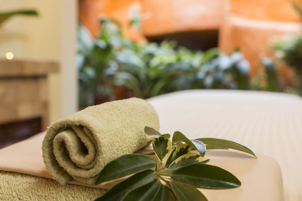 Massage, Baldi Hot Springs Hotel and Spa