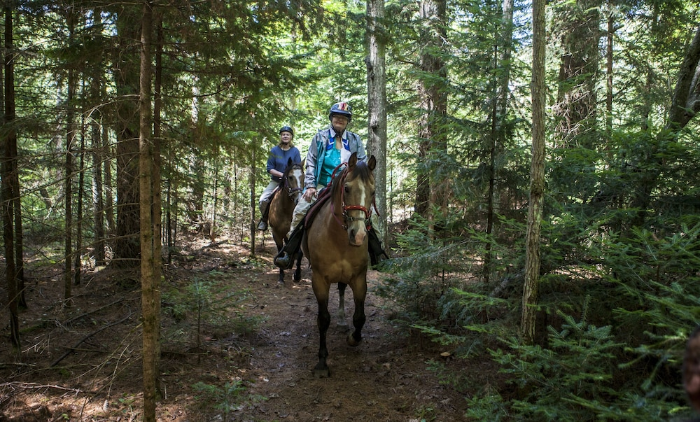 Horse Riding, High Peaks Resort