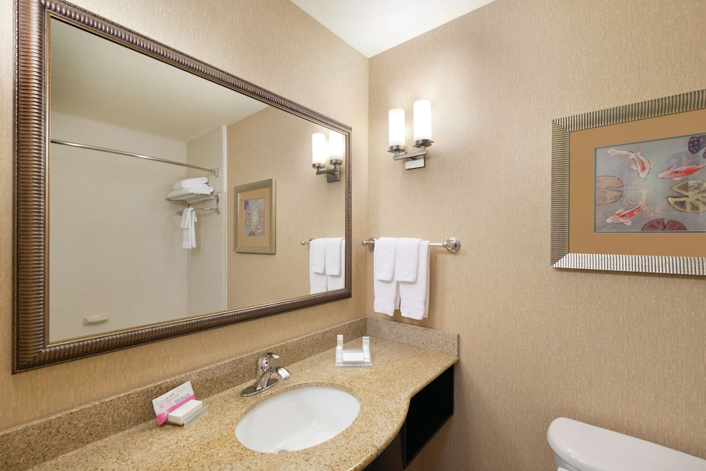 Bathroom, Hilton Garden Inn Warner Robins