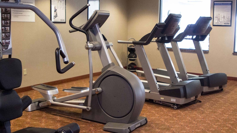 Gym, Holiday Inn Express Hotel & Suites Detroit-Novi