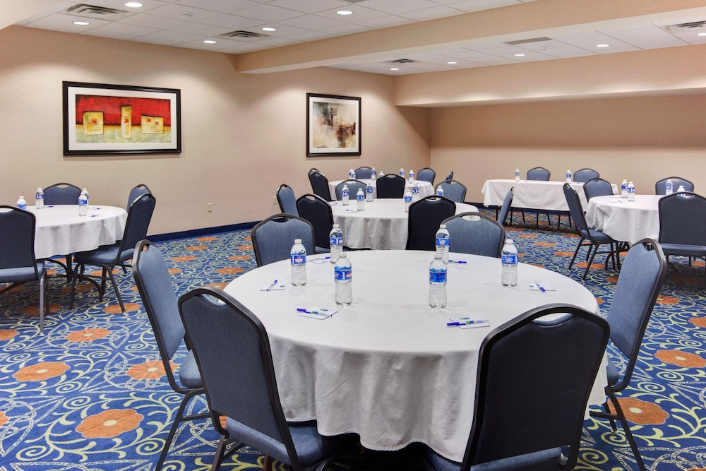 Meeting Facility, Holiday Inn Express Hotel & Suites Detroit-Novi