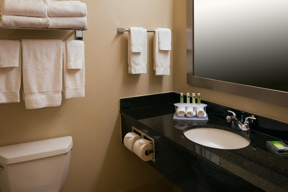 Bathroom, Holiday Inn Express & Suites Chicago West-Roselle
