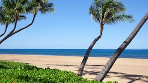 Private beach nearby, sun loungers, beach umbrellas, beach towels
