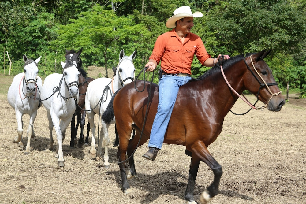 Horse Riding, The Springs Resort and Spa at Arenal