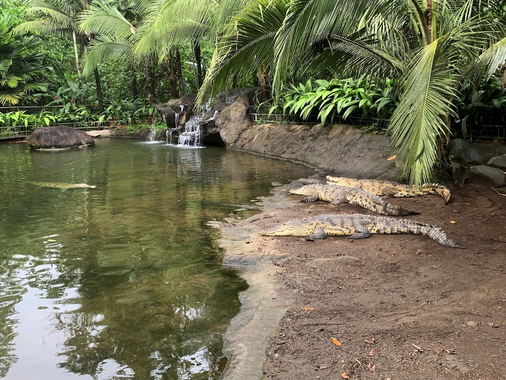 Ecotours, The Springs Resort and Spa at Arenal