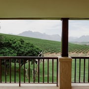 Vista a la montaña