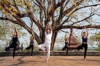 Anantara Angkor Resort (40 of 135)