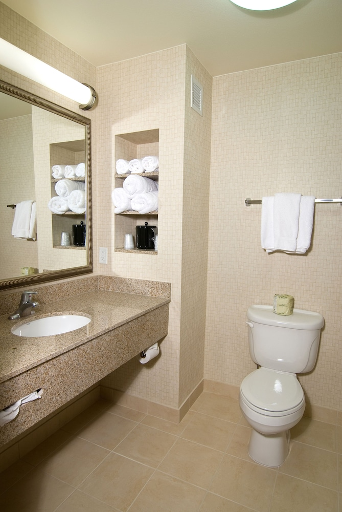 Bathroom, Holiday Inn Express Hotel & Suites Twin Falls, an IHG Hotel