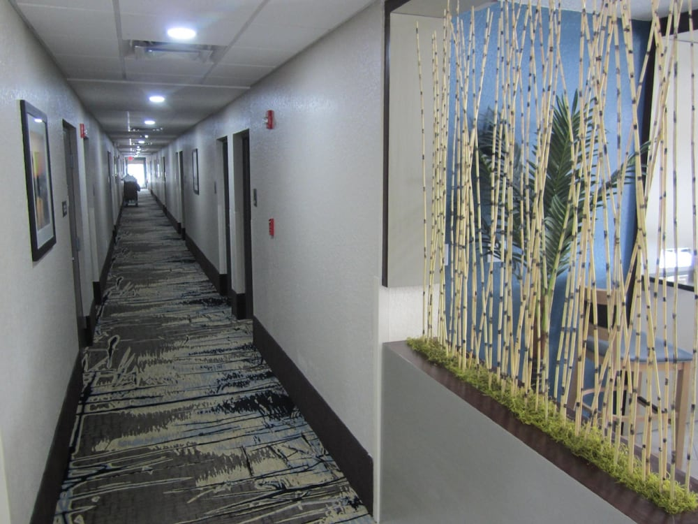 Hallway, Best Western Waldo Inn and Suites