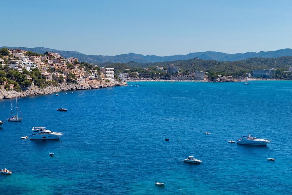 Www Hotel Coronado Mallorca