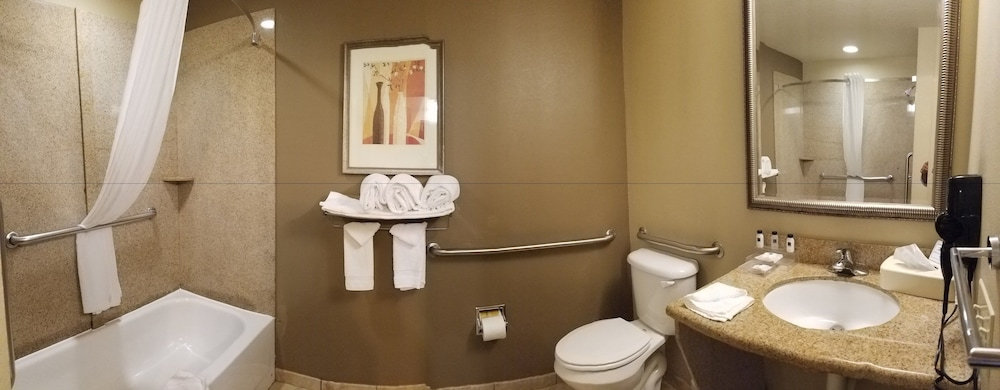 Bathroom, Country Inn & Suites by Radisson, Tampa Casino-Fairgrounds, FL