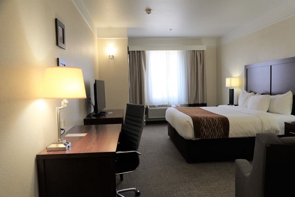 Room, Comfort Inn and Suites