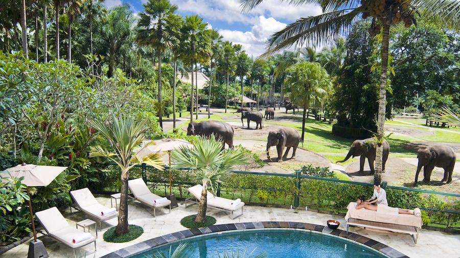 Mason Elephant Lodge