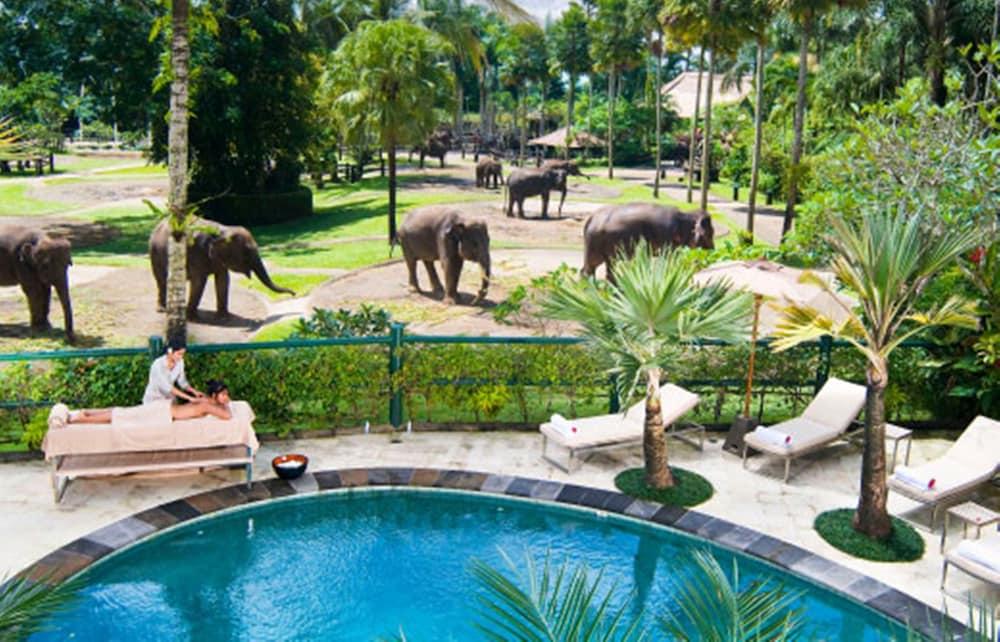 Elephant Safari Park Lodge Hotel Bali