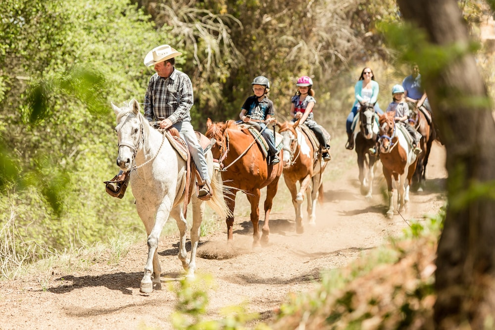 Horse Riding, Terranea - L.A.'s Oceanfront Resort