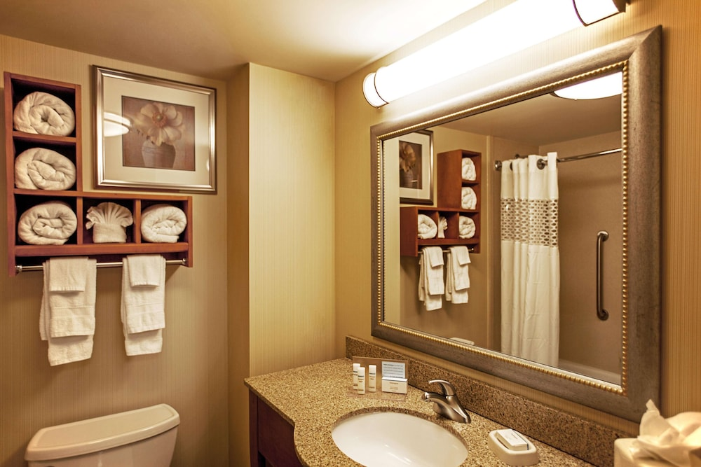 Bathroom, Hampton Inn New York - La Guardia Airport